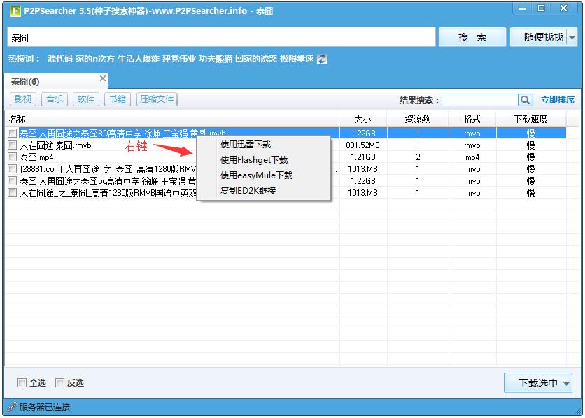 P2PSearcher迅雷种子搜索器 V3.5 绿色版