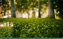 公园绿色草丛xp主题
