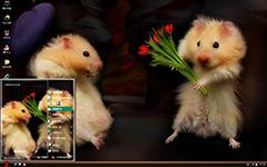 浪漫示爱的仓鼠XP主题
