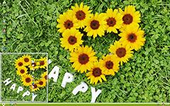 快乐向日葵之恋XP主题
