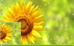 向阳之花向日葵xp主题