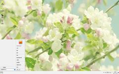 清新淡雅的白色花朵Win7主题