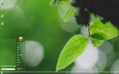 斑驳的绿叶清新摄影Win7主题
