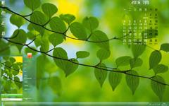 简洁的绿叶7月日历Win7主题