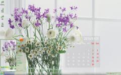 清爽的花儿4月日历Win7主题